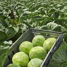 Innovationer möter lantbrukets utmaningar